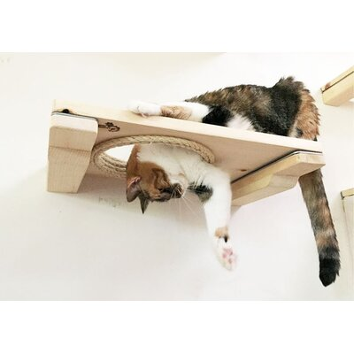 3 Cat Mod Escape Hatch Handcrafted Elevated Wall-mounted Shelf 3 Piece Cat Tree Set with Hole for Playing and Climbing Through Color: Unfinished