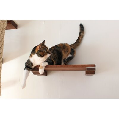 3 Cat Mod Shelf Handcrafted Elevated Wall-mounted 3 Piece Perch Set for Playing, Lounging and Climbing Color: English Chestnut