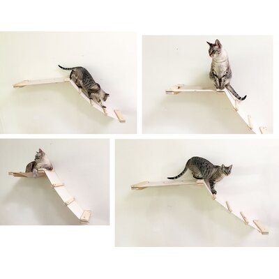 20 Mod Lift Hammock and Climbing Activity Center Handcrafted Wall-mounted Shelves Cat Tree Color: Unfinished/Natural