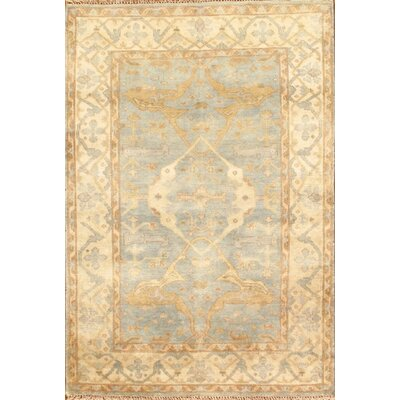 Hand-Knotted Tan/Blue Area Rug
