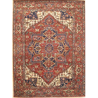 Serapi Hand-Knotted Red/Navy Area Rug
