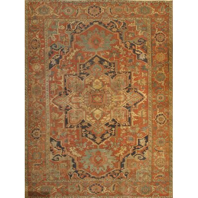 Antique Serapi Hand Knotted Wool Rust Area Rug