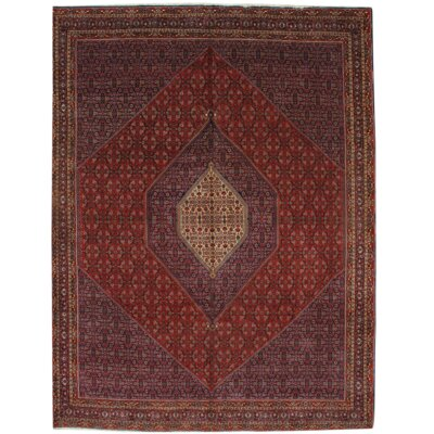 Persian Hand-Knotted Wool Red/Navy Area Rug
