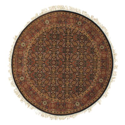 Indo Hand-Knotted Wool Navy/Rust Area Rug