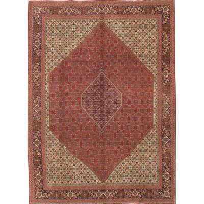 Persian Hand-Knotted Wool Rust/Navy Area Rug