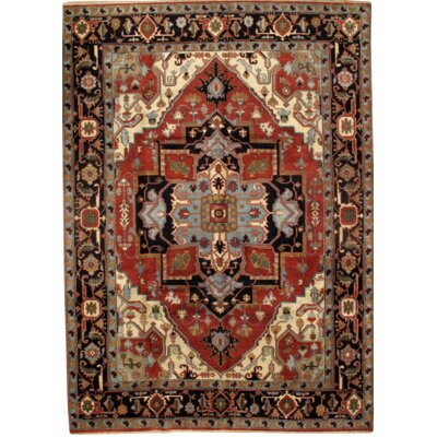 Indo Serapi Hand-Knotted Wool Rust/Navy Area Rug
