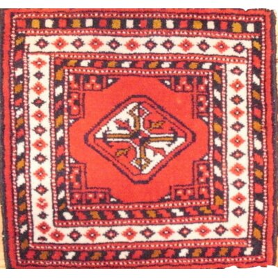 Torkaman Hand-Knotted Wool Red Area Rug