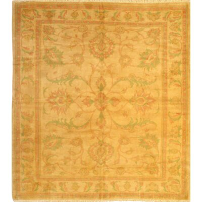 Hand Knotted Wool Ivory/Beige Area Rug