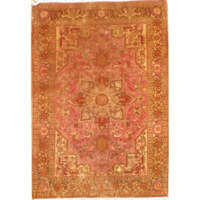 Persian Hand Knotted Rust Area Rug