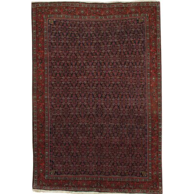 Persian Bidjar Hand-Knotted Wool Navy/Rust Area Rug