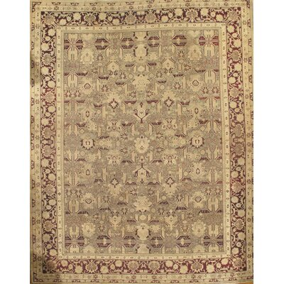 Antique Amritsar Hand-Knotted Wool Light Brown Area Rug