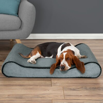 Orthopedic Memory Foam Bolster Dog Bed with Bolsters on Both Ends Color: Gray