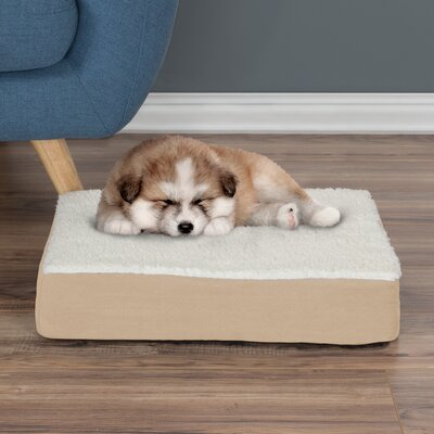 Orthopedic Sherpa Memory Foam Dog Mat Size: Small (4 H x 20 W x 15 D), Color: Tan