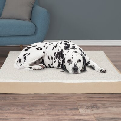 Orthopedic Sherpa Memory Foam Dog Mat Size: Extra-Large (4 H x 44 W x 35 D), Color: Tan
