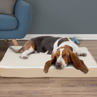 Orthopedic Sherpa Memory Foam Dog Mat Size: Large (4 H x 36 W x 27 D), Color: Tan