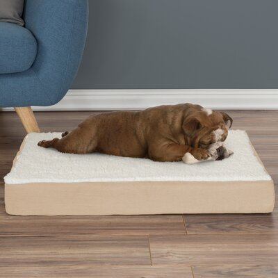 Orthopedic Sherpa Memory Foam Dog Mat Size: Medium (4 H x 30 W x 20.5 D), Color: Tan