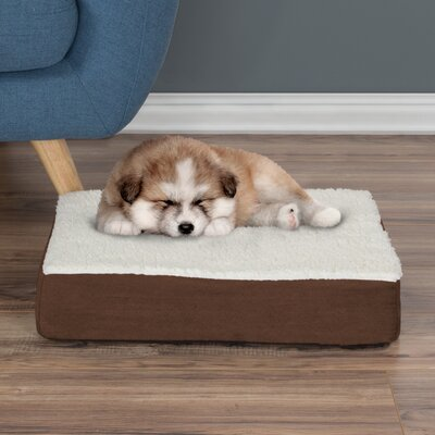 Orthopedic Sherpa Memory Foam Dog Mat Size: Small (4 H x 20 W x 15 D), Color: Brown