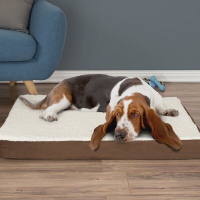 Orthopedic Sherpa Memory Foam Dog Mat Size: Large (4 H x 36 W x 27 D), Color: Brown