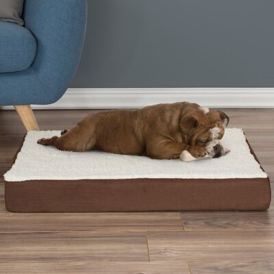 Orthopedic Sherpa Memory Foam Dog Mat Size: Medium (4 H x 30 W x 20.5 D), Color: Brown