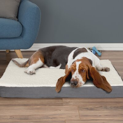 Orthopedic Sherpa Memory Foam Dog Mat Size: Large (4 H x 36 W x 27 D), Color: Gray