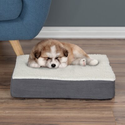 Orthopedic Sherpa Memory Foam Dog Mat Size: Small (4 H x 20 W x 15 D), Color: Gray