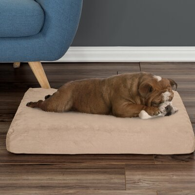 Orthopedic Pet Pad Size: Small (26.5 W x 19.5 D x 4 H), Color: Tan