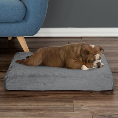 Orthopedic Dog Pad Size: Small (26 W x 19 D x 4 H), Color: Gray