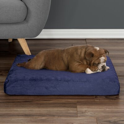 Orthopedic Dog Pad Size: Small (26 W x 19 D x 4 H), Color: Blue