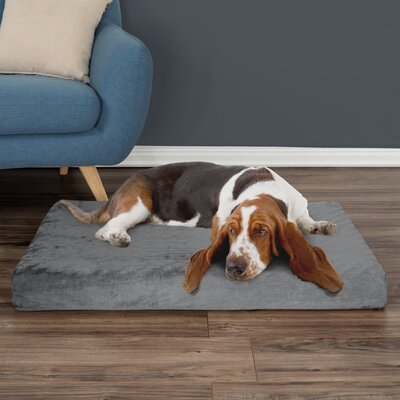 Orthopedic Dog Pad Size: Medium (37 W x 24 D x 4 H), Color: Gray