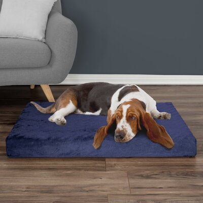 Orthopedic Dog Pad Size: Medium (37 W x 24 D x 4 H), Color: Blue