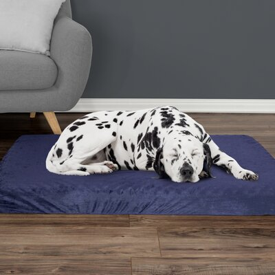 Orthopedic Dog Pad Size: Large (46 W x 27 D x 4 H), Color: Blue