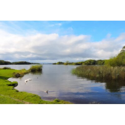 'Swans on Lough Leane' Photographic Print on Canvas