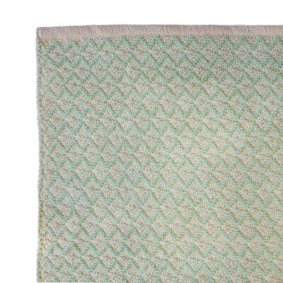 Hand-Woven Aqua Green Area Rug Rug Size: 2 x 3