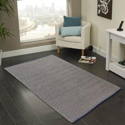 Hand-Woven Area Rug Rug Size: 2 x 3