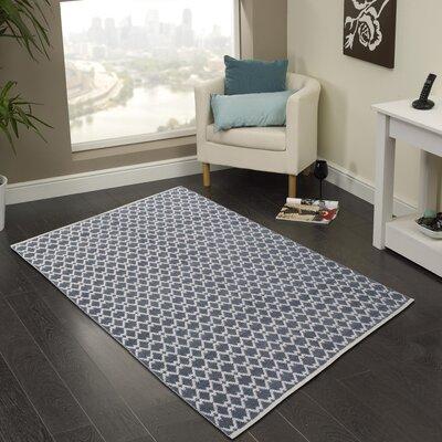 Hand-Woven Gray Area Rug Rug Size: 5 x 8