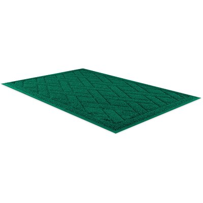 Dilorenzo Doormat Color: Green