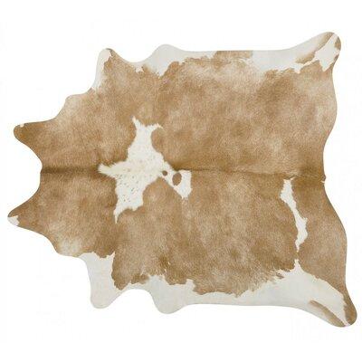Handmade Beige/White Area Rug Rug Size: 56 x 66