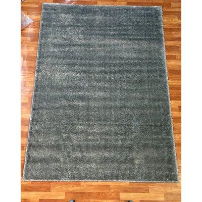 Gloria Gray Area Rug Rug Size: 28 x 77