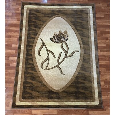 Rosa Brown Area Rug Rug Size: 53 x 75