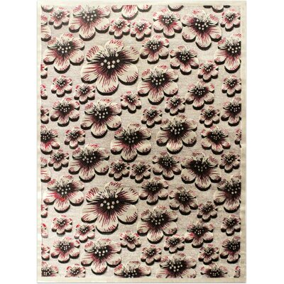Shonil Gray Area Rug Rug Size: 710 x 102