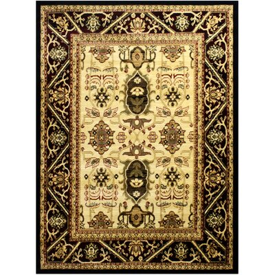 Super Mega Black/Cream Area Rug Rug Size: 53 x 73