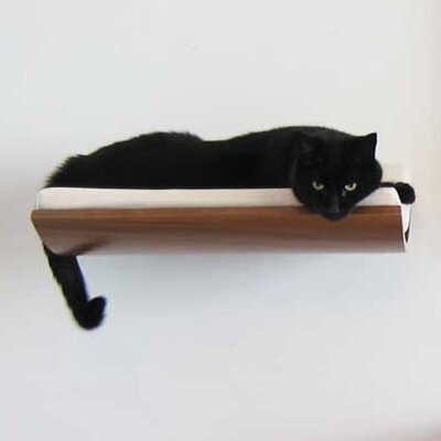 5 Musson Curve Wall Mounted Cat Perch Color: Cream
