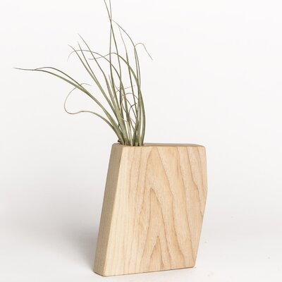 Boyce Studio Wyatt Jr. Air Plant Holder Wood Pot Planter