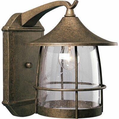 Triplehorn 1-Light Outdoor Wire Wall Lantern