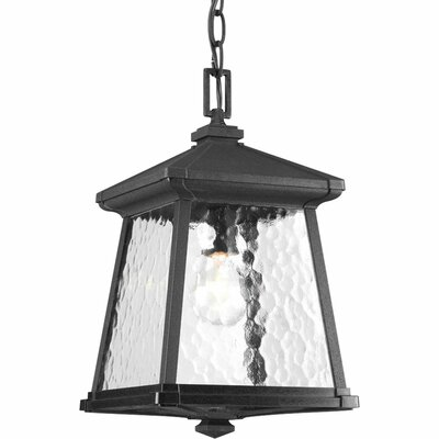 Triplehorn 1-Light Hanging Black Lantern