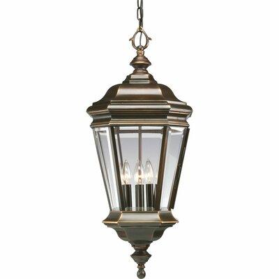 Triplehorn 4-Light Outdoor Brass Hanging Lantern