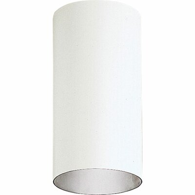 Novack 1-Light Flush Mount Shade Color: White