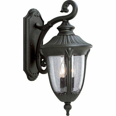 Triplehorn 2-Light Outdoor Wall Lantern