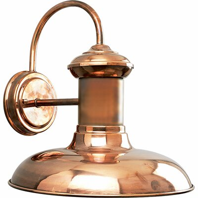 Pinellas Park 1 Light Wall Lantern Finish: Solid Copper