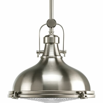 Fresnel 1 Light Mini Pendant Finish: Brushed Nickel